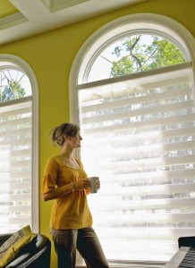 Altex horizontal blinds Ottawa
