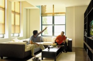 Altex roller shades ottawa